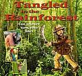 Tangled in the Rainforest