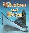 Skates & Rays