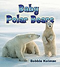 It's Fun to Learn about Baby Animals #19: Baby Polar Bears Cover