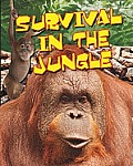 Survival in the Jungle