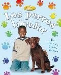 Los Perros Labradors = Labrador Retrievers