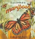 El Cido de Vida de la Mariposa = Life Cycle of a Butterfly