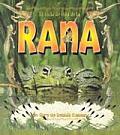 El Ciclo de Vida de la Rana Life Cycle of a Frog