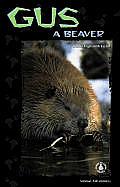 Gus: A Beaver