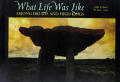 What Life Was Like Among Druids & High Kings Celtic Ireland AD 400 1200