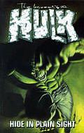 Hide In Plain Sight Incredible Hulk 05