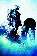 Origins & Endings Wolverine