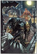 Black Panther: The Man Without Fear Volume 1: Urban Jungle (Black Panther)