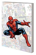 Spider Man Am I an Avenger