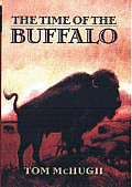 Time of the Buffalo