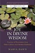 Joy in Divine Wisdom Practices of Discernment from Other Cultures & Christian Traditions