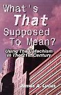 What's That Supposed to Mean?: Using the Catechism in the 21st Century