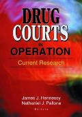 Drug Courts in Operation