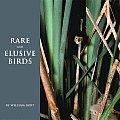 Rare & Elusive Birds Of North America