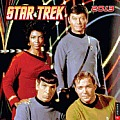 Star Trek 2013 Wall Calendar: The Original Series Cover
