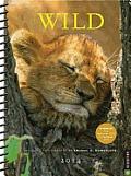 Wild 2013-2014 Engagement Calendar: Wildlife Photography by Thomas D. Mangelsen