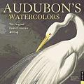 Cal14 Audubons Watercolors Wall Calendar 2014