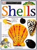 Shells Eyewitness Explorers