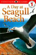 Day At Seagull Beach Eyewitness Readers