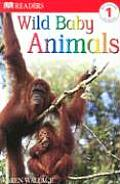 Wild Baby Animals (DK Eyewitness Readers: Level 1) Cover