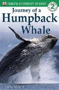 Journey Of A Humpback Whale Level 2