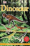 DK Picture Stickers Dinosaur