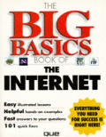 Big Basics Book of Internet (96 - Old Edition)