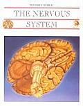 The Nervous System and the Brain (Invisible World)