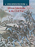 African-Americans in the Civil War (Untold History of the Civil War)