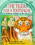 Tiger Has a Toothache Helping Animals at the Zoo
