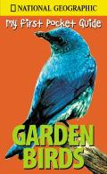 Garden Birds My First Pocket Guide National