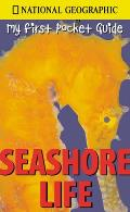 Seashore Life National Geographic My First Pocket Guides
