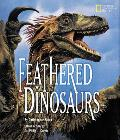 Feathered Dinosaurs Why Scientists Think