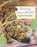 Watching Desert Wildlife National Geogra