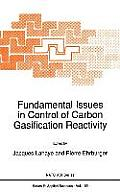 Materials Science of Minerals and Rocks #192: Fundamental Issues in Control of Carbon Gasification Reactivity