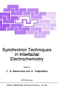Synchrotron Techniques in Interfacial Electrochemistry: Proceedings of the NATO Advanced Research Workshop, Funchal, Madeira, Portugal, December 14-18, 1992