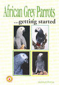 African Grey Parrots As A Hobby