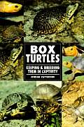 Box Turtles the Real Thing Cover