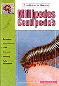 The Guide To Owning Millipedes and Centipedes
