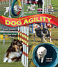 Beginners Guide To Dog Agility Fun Frolic