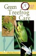 Green Treefrog Care