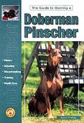 Guide To Owning A Doberman Pinscher