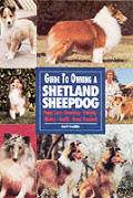 Guide To Owning A Shetland Sheepdog