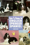 Guide To Owning An English Springer Spaniel