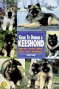 Guide To Owning A Keeshond