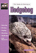 Hedgehog (Guide to Owning)