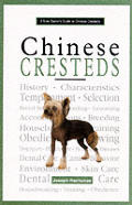 New Owners Guide To Chinese Cresteds