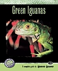 Green Iguanas A Complete Guide to Iguana Iguana