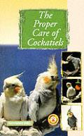 Proper Care Of Cockatiels