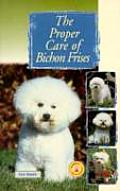 Proper Care Of Bichon Frises